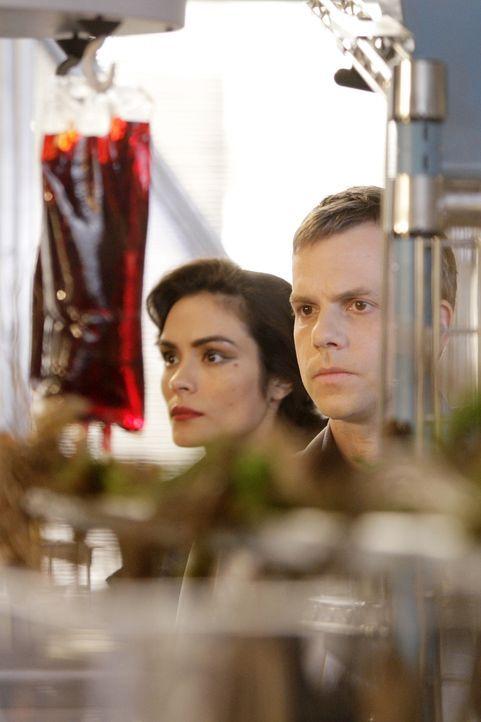Der Wissenschaftler (Jeremy Forte, r.) weiß, wie er Coraline (Shannyn Sossamon, l.) in einen Menschen zurückverwandeln kann. Sie verstößt mit ih... - Bildquelle: Warner Brothers