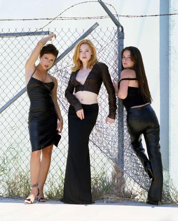 (6. Staffel) - Nichts und niemand kann die sexy Hexen aufhalten: Phoebe (Alyssa Milano, l.), Piper (Holly Marie Combs, r.) und Paige (Rose McGowan,... - Bildquelle: Paramount Pictures