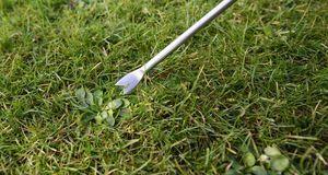 Mit dem passenden Gartengerät sind selbst lästige Gartenarbeiten wie Unkrautj...