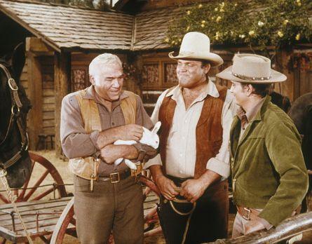 Bonanza - Weil Hoss (Dan Blocker, M.) und Little Joe (Michael Landon, r.) kna...
