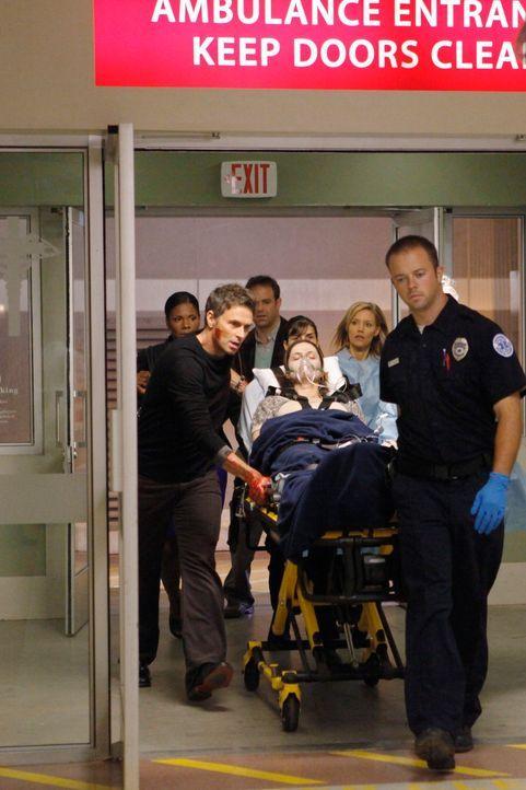 Nachdem Violet (Amy Brenneman, liegend) von Katie angegriffen wurde, bringt sie Pete (Tim Daly, vorne r.) ins Krankenhaus. Naomi (Audra McDonald, hi... - Bildquelle: ABC Studios