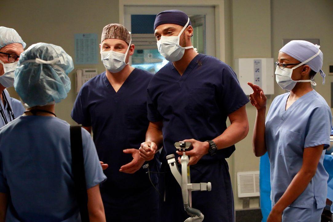 Der Konkurrenzkampf innerhalb der Ärzteschaft verstärkt sich: Jackson (Jesse Williams, 2.v.r.), Alex (Justin Chambers, M.) und Stephanie (Jerrika Hi... - Bildquelle: ABC Studios