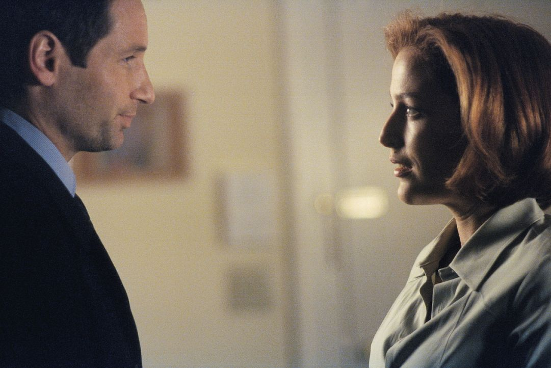 In ihrer Schwangerschaft nimmt Scully (Gillian Anderson, r.) sich oft die Zeit, um an die gemeinsame Vergangenheit mit Mulder (David Duchovny, l.) z... - Bildquelle: TM +   2000 Twentieth Century Fox Film Corporation. All Rights Reserved.
