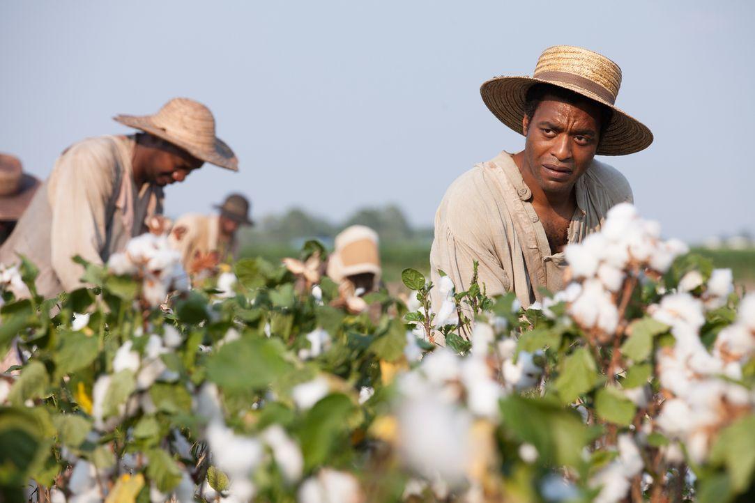Als freier Afroamerikaner hat Solomon (Chiwetel Ejiofor) ein komfortables Leben im Staate New York geführt, bis er entführt und in die Sklaverei ver... - Bildquelle: TOBIS FILM