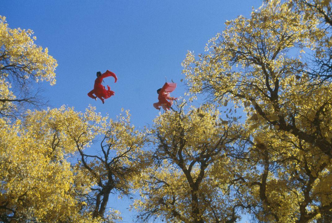 Bereit, für ihre Überzeugung zu sterben: Flying Snow (Maggie Cheung, l.) und Moon (Ziyi Zhang, r.) ... - Bildquelle: Constantin Film