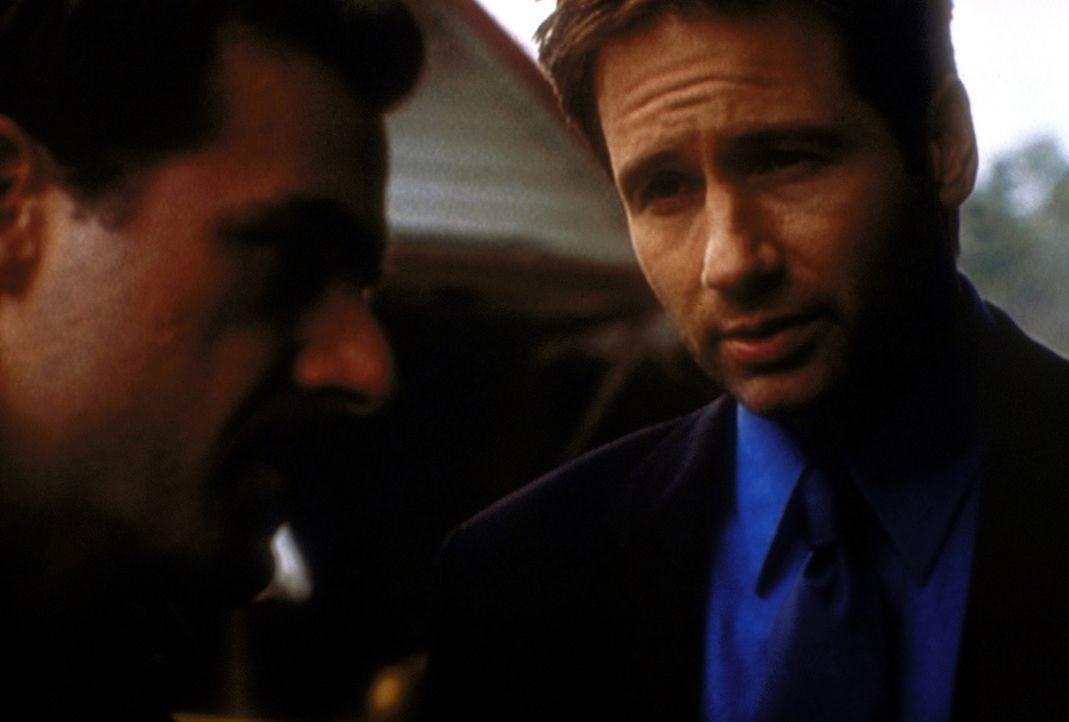 Sheriff Phil Adderly (John Mese, l.) und Mulder (David Duchovny, r.) geraten bei der Suche nach einer verschwundenen Frau immer tiefer in ein Eifers... - Bildquelle: TM +   2000 Twentieth Century Fox Film Corporation. All Rights Reserved.