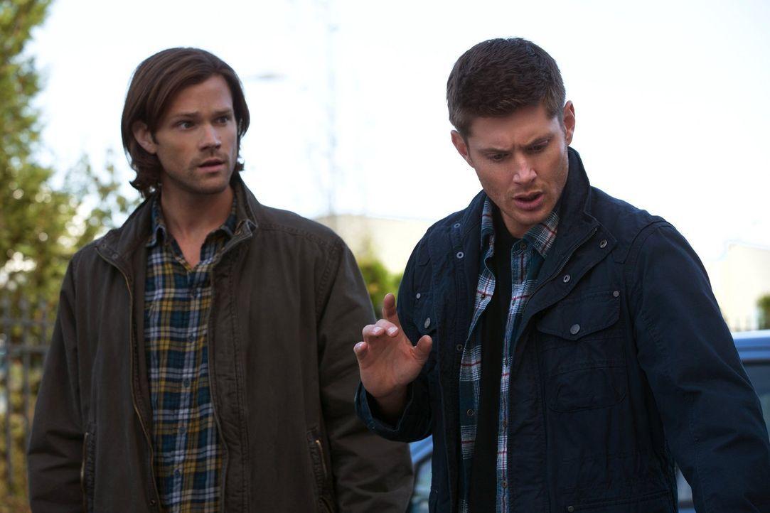 Als zwei Menschen auf seltsame Weise umgebracht werden, suchen Sam (Jared Padalecki, l.) und Dean (Jensen Ackles, r.) nach Hinweisen und setzten sch... - Bildquelle: 2013 Warner Brothers