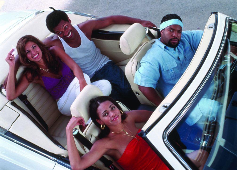 Auf der Jagd nach der ganz großen Kohle: (hinten v.l.n.r.) Gina (Eva Mendes), Reggie Reed (Mike Epps), (vorne v.l.n.r.) Pam (Valarie Rae Miller) un... - Bildquelle: New Line Cinema