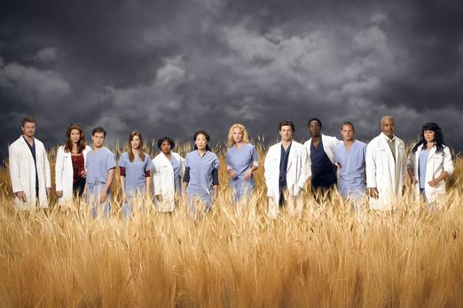 Grey's Anatomy - (3. Staffel) - Die Belegschaft des Seattle Grace Hospitals:...