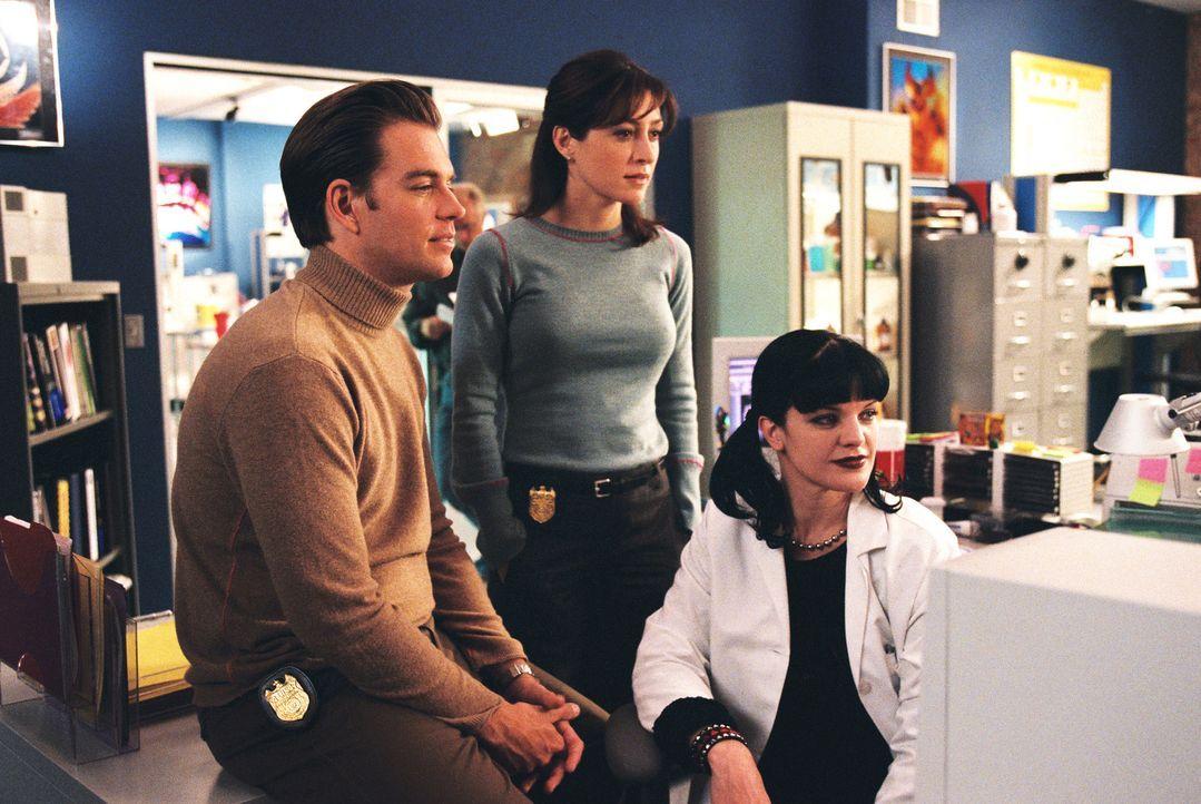 Stehen vor einem Rätsel: Tony (Michael Weatherly, l.), Kate (Sasha Alexander, M.) und Abby (Pauley Perrette, r.) ... - Bildquelle: CBS Television