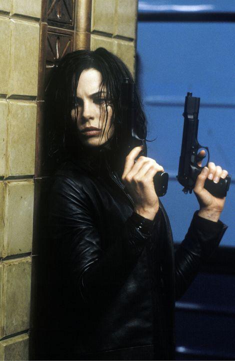 Während die Werwölfe versuchen, Selene (Kate Beckinsale) eine Kugel mit ultraviolettem Licht in den Schädel zu jagen, bemüht sich diese, den Werwölf... - Bildquelle: 2003 Lakeshore Entertainment Group LLC. All Rights Reserved.