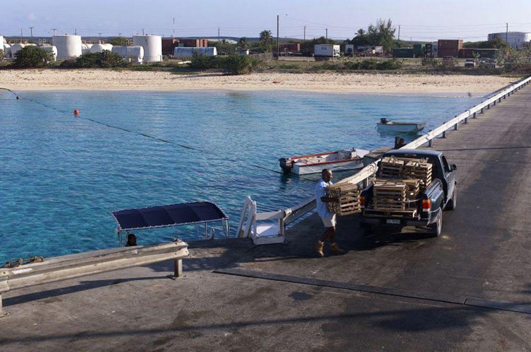 """Völlig unerwartet breitet sich ein gefährliches Virus auf der Urlaubsinsel """"Barsato Island"""" aus, der Anwohner und Urlauber in Angst und Schrecken... - Bildquelle: Regent Worldwide Sales LLC"""