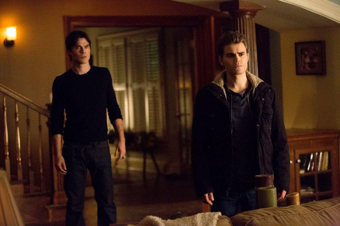 Die Brüder Stefan und Damon - Bildquelle: Warner Bros. Entertainment Inc.
