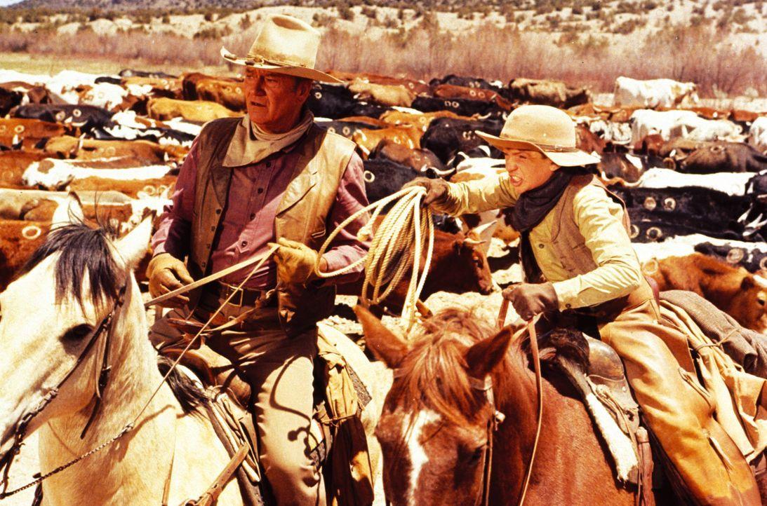 Nicht nur den Umgang mit dem Lasso muss Wil Andersen (John Wayne, l.) seinen jungen Schülern beibringen ... - Bildquelle: Warner Bros.