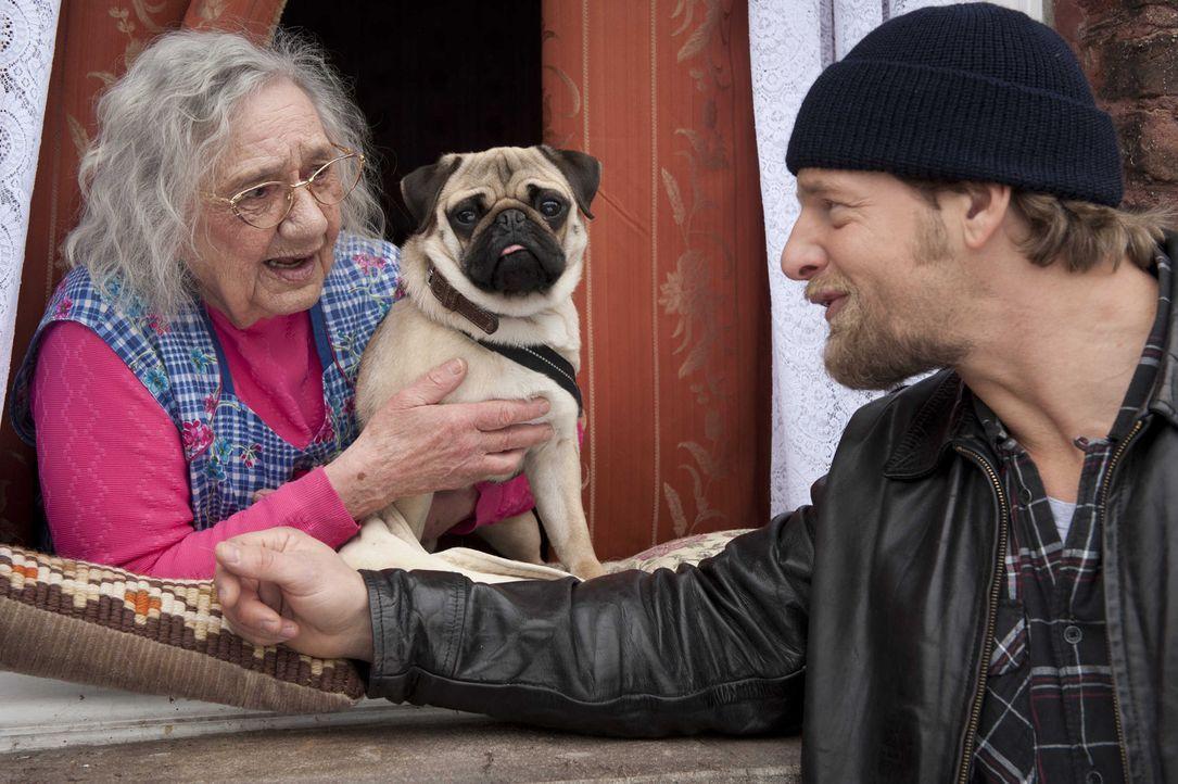 Glücklicherweise macht Oma Schlonzek (Dorothea Walda, l.) alles andere, als ihre Nachbarn zu beobachten. Deshalb bekommt Mick (Henning Baum, r.) auc... - Bildquelle: Martin Rottenkolber SAT.1