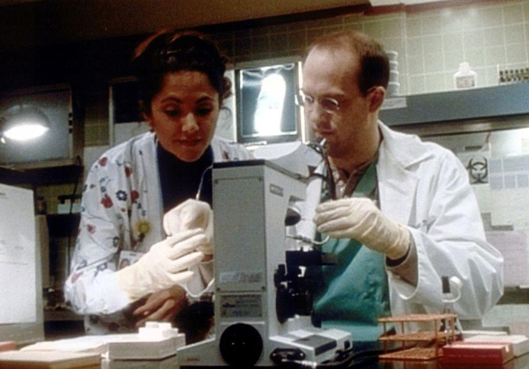 Nach und nach entwickeln sich zwischen Dr. Greene (Anthony Edwards, r.) und der attraktiven Krankenschwester Marquez (Laura Ceron, l.) tiefere Gefü... - Bildquelle: TM+  2000 WARNER BROS.