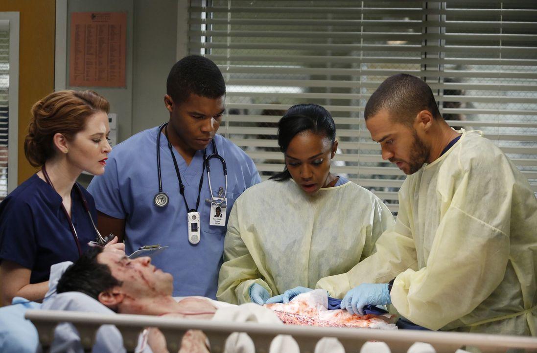 April (Sarah Drew, l.), Shane (Gaius Charles, 2.v.l.), Stephanie (Jerrika Hinton, 2.v.r.) und Jackson (Jesse Williams, r.) kümmern sich um Stuart Lo... - Bildquelle: ABC Studios