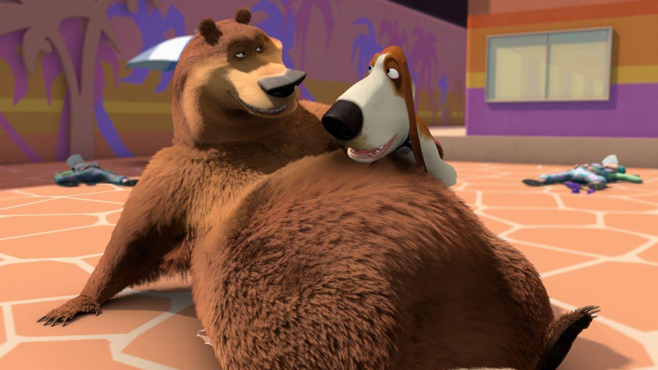 Freundet sich der Grizzlie Boog (l.) tatsächlich mit dem Beagle Roberto (r.) an? - Bildquelle: 2008 Sony Pictures Animation Inc. All Rights Reserved.