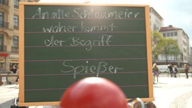 Schlaumeier - Spießer