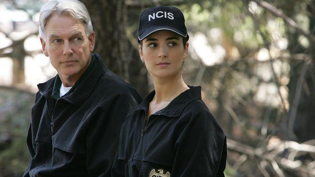 Versuchen den Fall des ermordeten Lieutenant Commander Carrie McLellan zu klä...