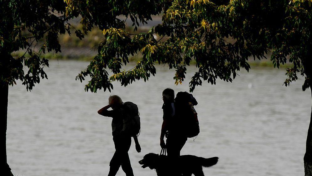 Wandern mit Hund: Hierauf sollten Sie achten - Bildquelle: dpa
