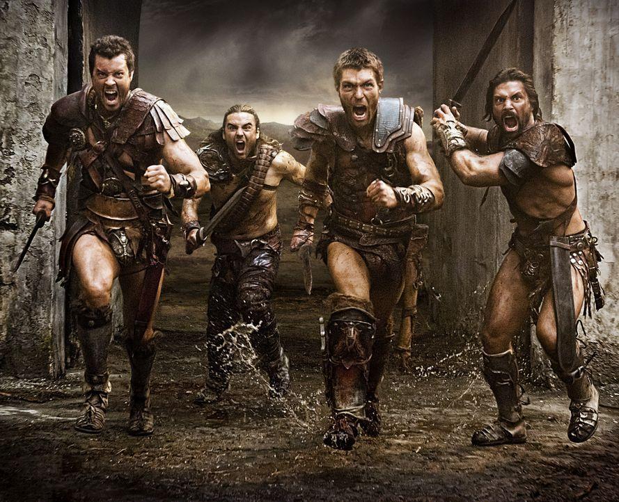 Nach und nach können (v.l.n.r.) Agron (Daniel Feuerriegel), Gannicus (Dustin Clare), Spartacus (Liam McIntyre) und Crixus (Manu Bennett) immer mehr... - Bildquelle: 2012 Starz Entertainment, LLC. All rights reserved.