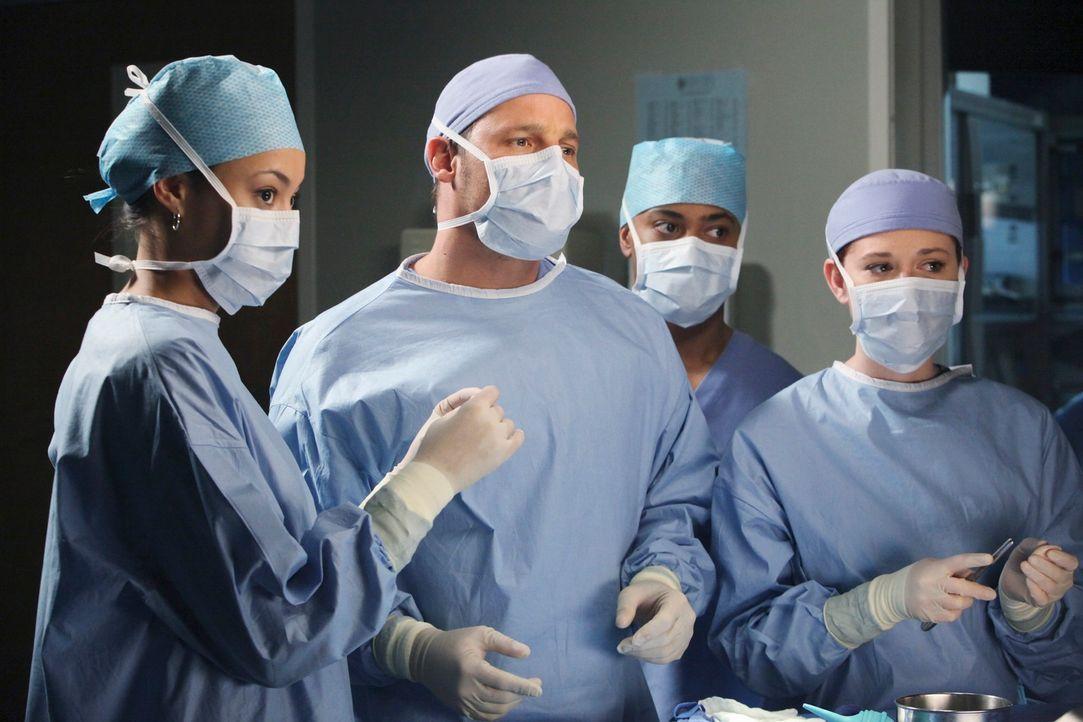 Richard Webber hat eine Reihe von Medizinstudenten im Schlepptau, die den jungen Ärzten über die Schulter schauen sollen. Meredith, April (Sarah Dre... - Bildquelle: ABC Studios