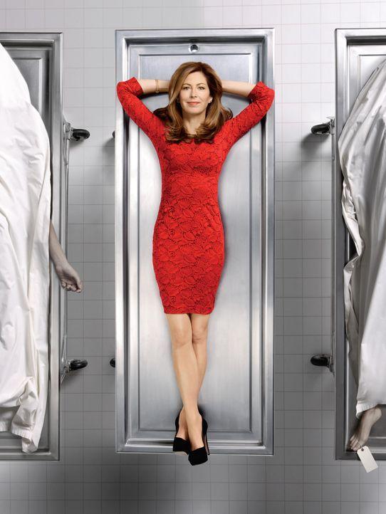 (2. Staffel) - Dank ihrer überragenden medizinischen Kenntnisse ist Dr. Megan Hunt (Dana Delany) in der Lage, Verbrechen auf ihre ganz eigene und bi... - Bildquelle: ABC Studios