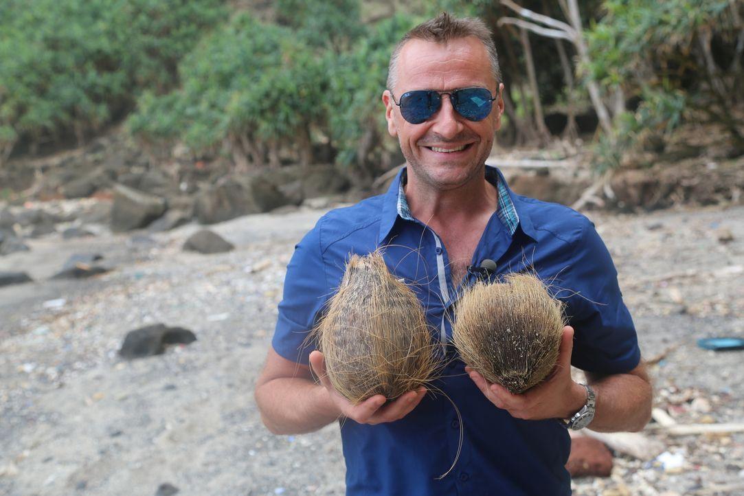 Tom Waes' nächste Reise führt ihn auf die stark isolierte Insel Pitcairn. Ihre Bewohner sind Nachfahren der berühmten Meuterer auf der Bounty. Doch... - Bildquelle: 2013 deMENSEN