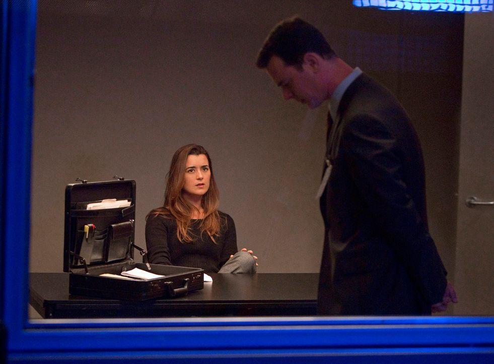 Richard Parsons (Colin Hanks, r.), ein Ermittler des Verteidigungsministeriums, taucht auf, um den Mord an Eli David und die Todesumstände von Ilan... - Bildquelle: CBS Television