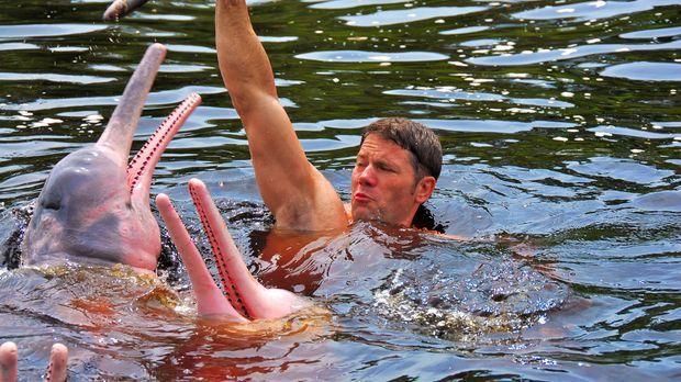 Auf ihrer Tour durch die Flüsse Brasiliens treffen Steve und sein Team auf di...