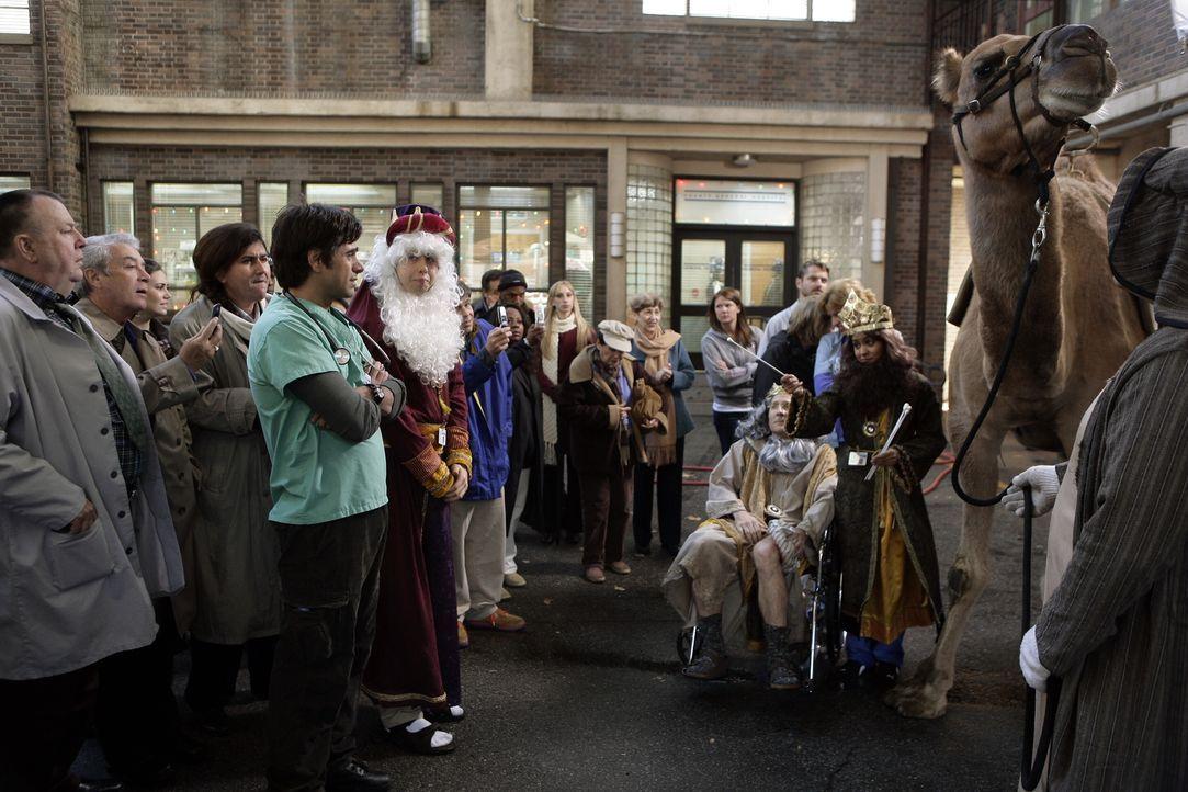 Das Aufsehen ist groß, als vor der Notaufnahme bei einem Kamel eine Speichelprobe genommen werden muss. Frank (Troy Evans, l.) Tony (John Stamos, 4... - Bildquelle: Warner Bros. Television