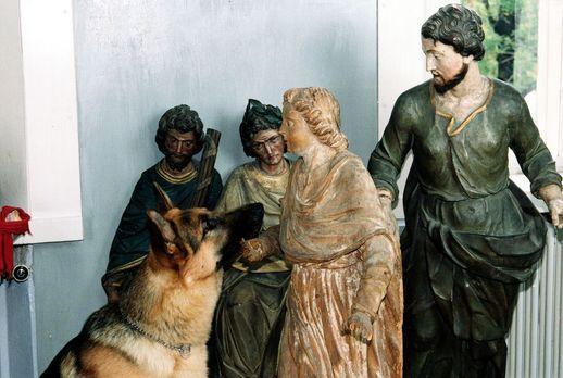 Auf der Suche nach dem Bild, unter dem sich das Testament des verstorbenen re...