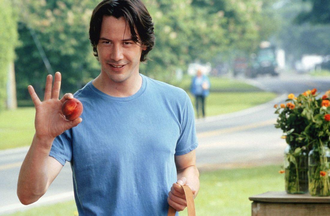 Fühlt sich zu Erica hingezogen: Julian Mercer (Keanu Reeves) ... - Bildquelle: Warner Bros. Pictures