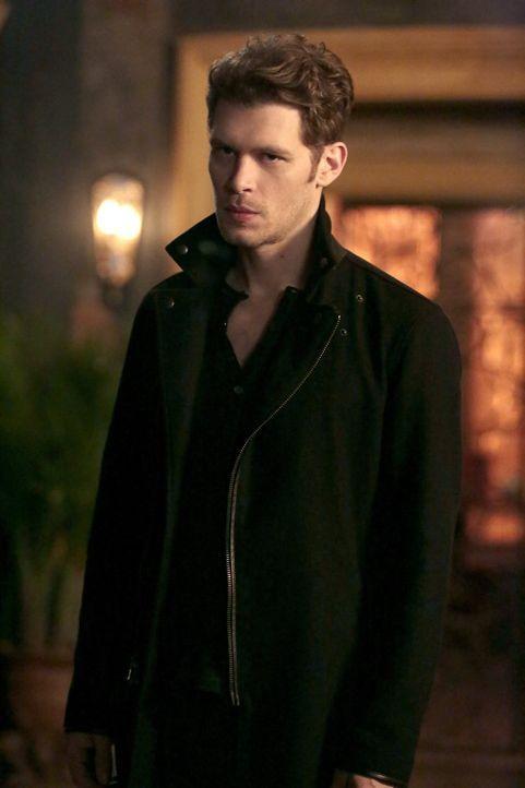 Noch ahnt Klaus (Joseph Morgan) nicht, wozu Cami wirklich fähig ist ... - Bildquelle: Warner Bros. Entertainment, Inc.