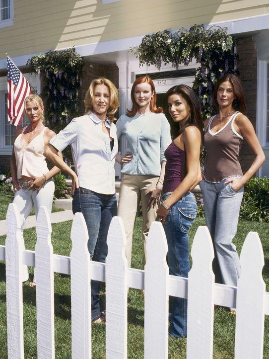 (1. Staffel) - Spielen perfekte Hausfrauen, doch hinter der Fassade ereignen sich Dramen: Edie Britt (Nicollette Sheridan, l.), Lynette Scavo (Felic... - Bildquelle: Touchstone Pictures