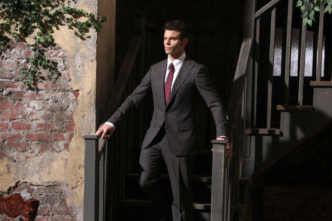 Elijahs (Daniel Gillies) Gefühle für Hayley sind ungebrochen, doch wird er sie beschützen können? - Bildquelle: Warner Bros. Television
