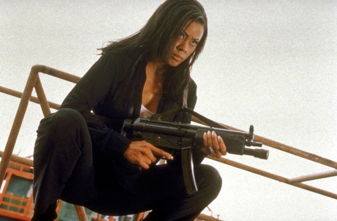 CIA-Undercover-Agentin Karen (Lela Rochon) denkt nicht daran, kampflos aufzugeben ... - Bildquelle: TriStar Pictures