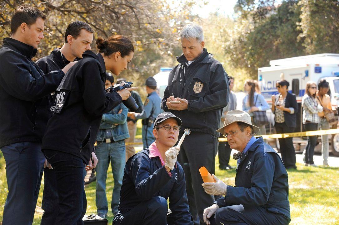 Ermitteln in einem neuen Mordfall: Tony (Michael Weatherly, l.), McGee (Sean Murray, 2.v.l.), Ziva (Cote de Pablo, 3.v.l.), Jimmy (Brian Dietzen, 3.... - Bildquelle: 2012 CBS Broadcasting Inc. All Rights Reserved.