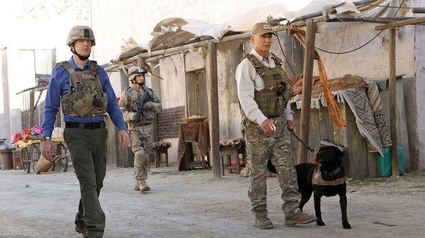 In Afghanistan wird ein Hundeführer der Marines, Ted LaMere, aus dem Hinterha...