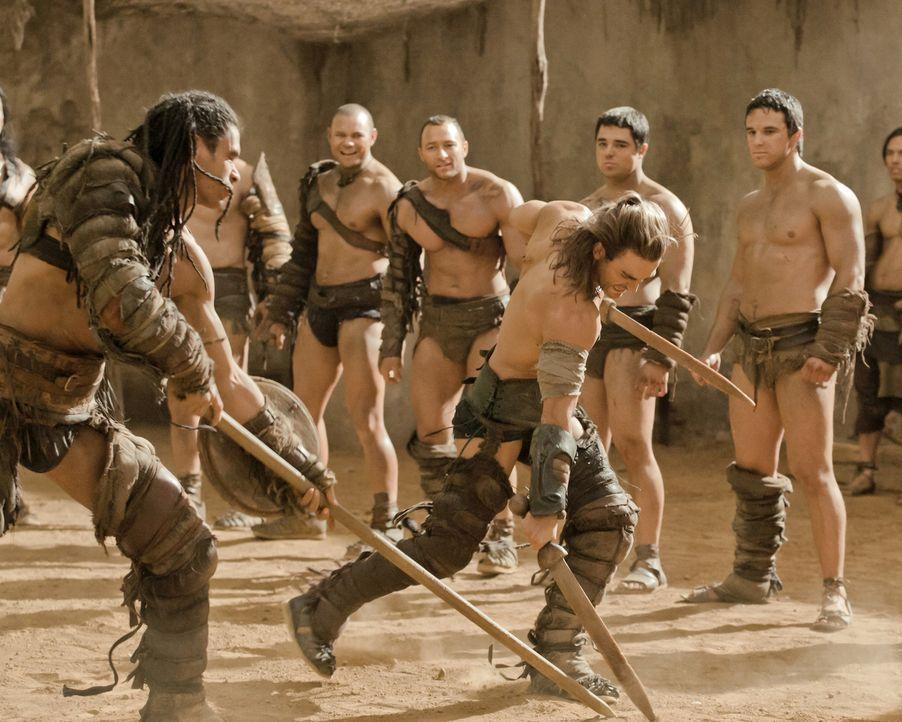 Um die Rangfolge unter den Gladiatoren festlegen zu können, werden eine Reihe von Trainingskämpfen veranstaltet: Barca (Antonio Te Maioha, vorne l... - Bildquelle: 2010 Starz Entertainment, LLC