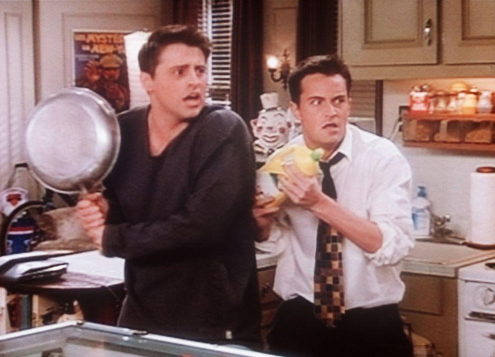 Joey (Matt LeBlanc, l.) und Chandler (Matthew Perry, r.) erwarten einen Fan von Joey. Man weiß ja nie, wie sich weibliche Fans verhalten ... - Bildquelle: TM+  2000 WARNER BROS.