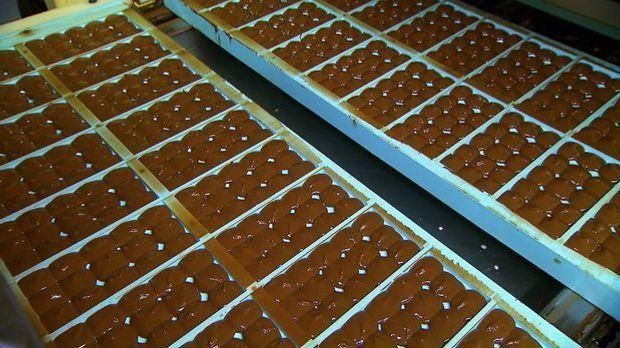 Der lange Weg der Schokolade