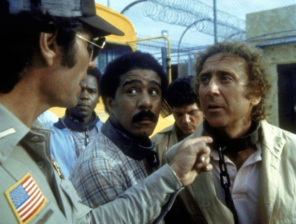 Obwohl Harry (Richard Pryor, M.) und Skip (Gene Wilder, r.) vehement ihre Unschuld beteuern, werden sie verhaftet und zu einer langen Freiheitsstraf... - Bildquelle: Columbia Pictures Corporation