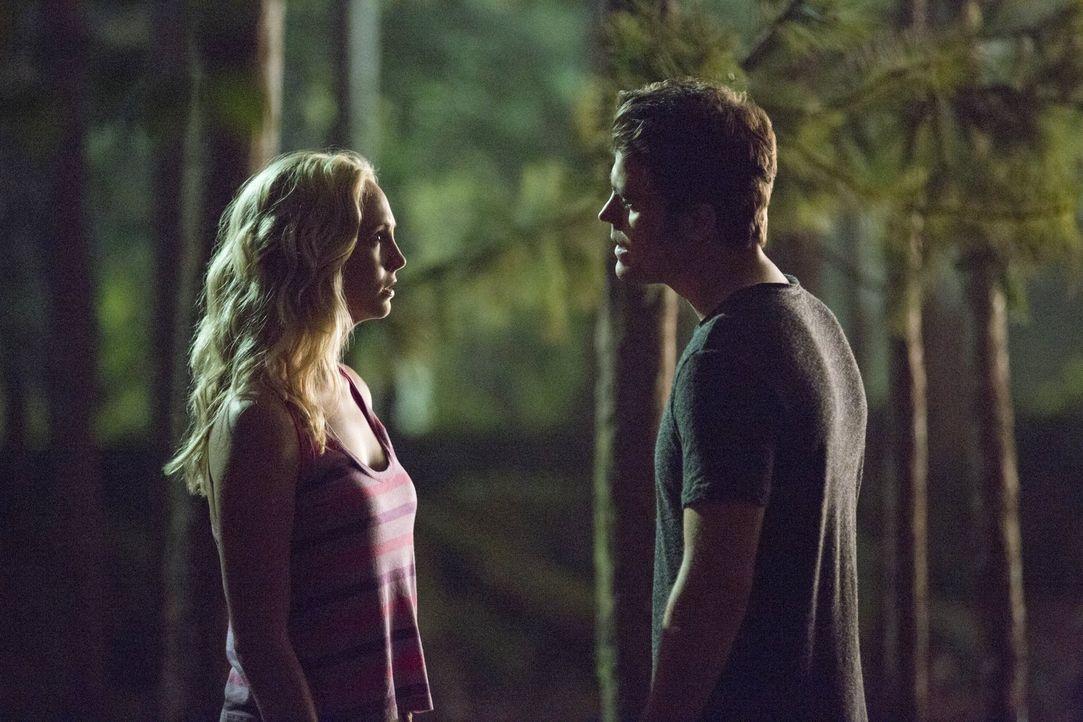 Während Caroline (Candice Accola, l.) und Stefan (Paul Wesley, r.) versuchen ihre Leben wieder in den Griff zu bekommen, treiben eigenartige Vorkomm... - Bildquelle: Warner Bros. Entertainment, Inc