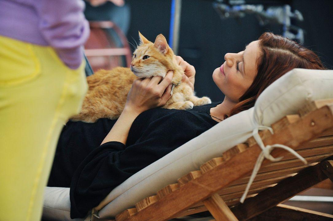 Genießt einen entspannten Abend: Addison (Kate Walsh) ... - Bildquelle: ABC Studios