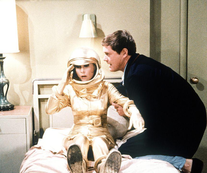 Nach einer Weltraummission muss Tony (Larry Hagman, r.) für drei Wochen in Quarantäne. Jeannie (Barbara Eden, l.) beschließt kurzerhand, ihn zu besu...