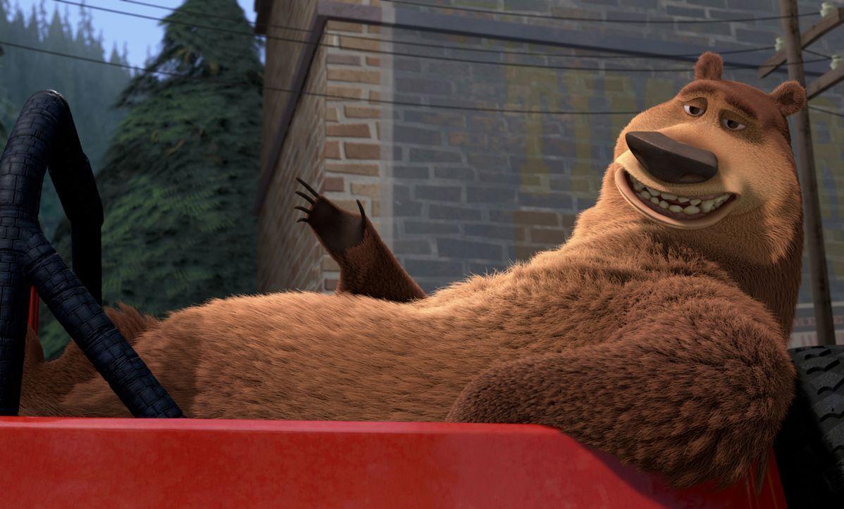 Boog ist ein moderner Bär, der die Vorteile der Zivilisation zu schätzen weiß. - Bildquelle: Sony Pictures Television International. All Rights Reserved.