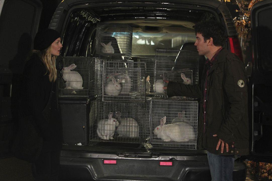 Ted (Josh Radnor, r.) lernt die sympathische Zoey (Jennifer Morrison, l.) kennen. Doch leider verläuft nicht alles nach Plan ... - Bildquelle: 20th Century Fox International Television