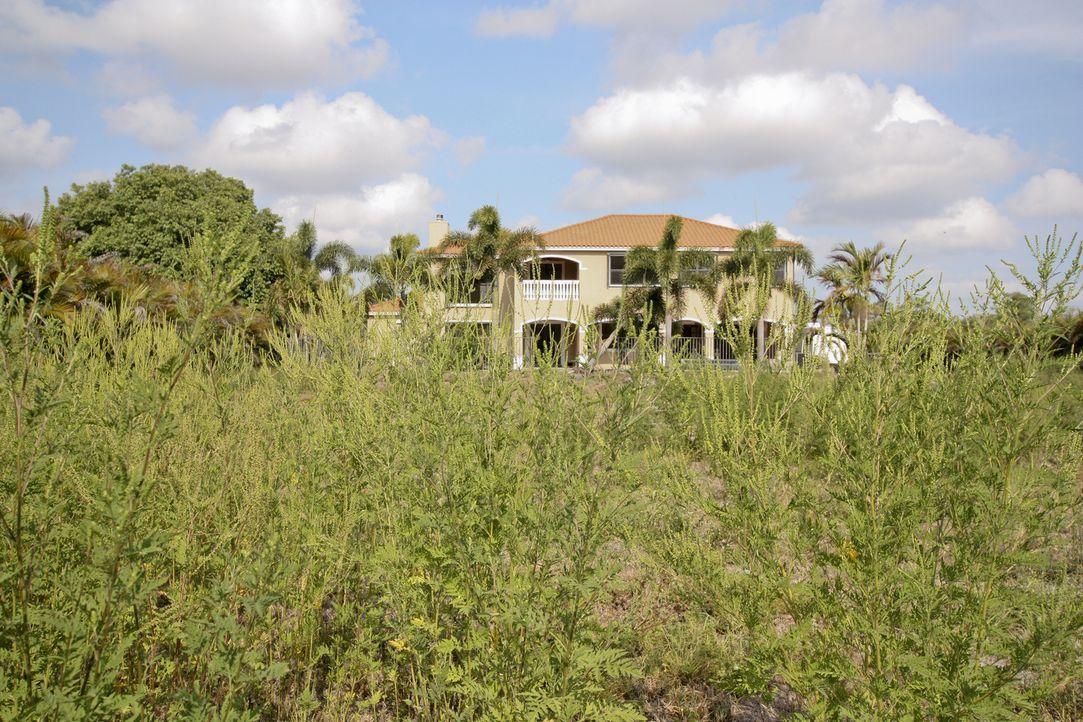 In Florida leben die Menschen aufgrund des guten Wetters vor allem draußen. Dementsprechend ist auch ein perfekt eingerichteter Garten ein Muss ... - Bildquelle: 2012, DIY Network/Scripps Networks, LLC.  All Rights Reserved